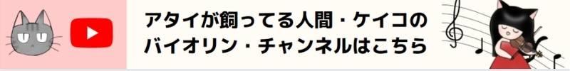 Tokunaga-Violin-Banner